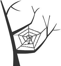 wanaka website design from spiderweb design in wanaka